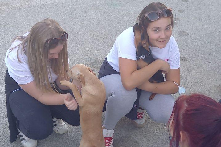 Druženje volontera CK-a sa psima iz Skloniša u Liču / Foto S. Krizmanić